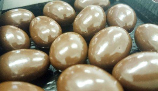 菌入りチョコレート2日目!今度は乳酸菌入り☆